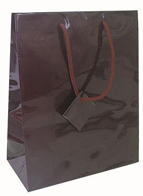 Glossy Euro Totes Euro Totes Laminated Paper Bags Paper